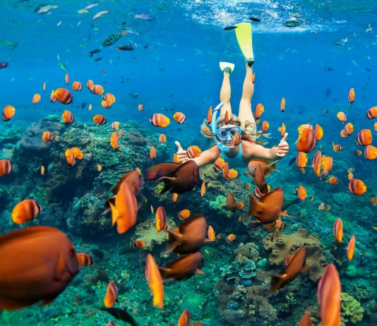 Snorkeling in Hawaii is one of many adventures your clients can enjoy at a discount with Exodus Travels.