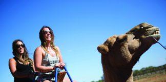 G Adventures is offering active itineraries around the world under its 18-to-Thirtysomething portfolio.