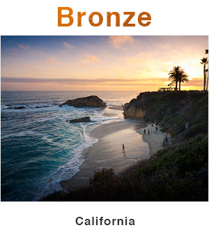 California Bronze
