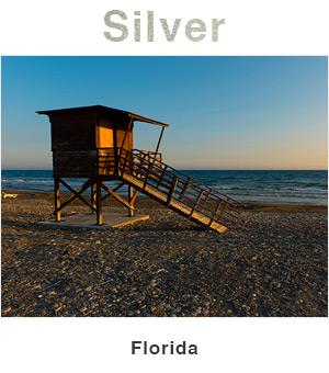 Florida Silver