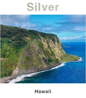 Hawaii Silver