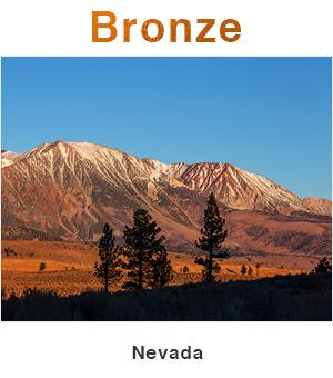 Nevada Bronze