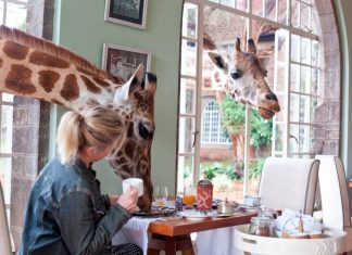 Giraffe Manor in Kenya.