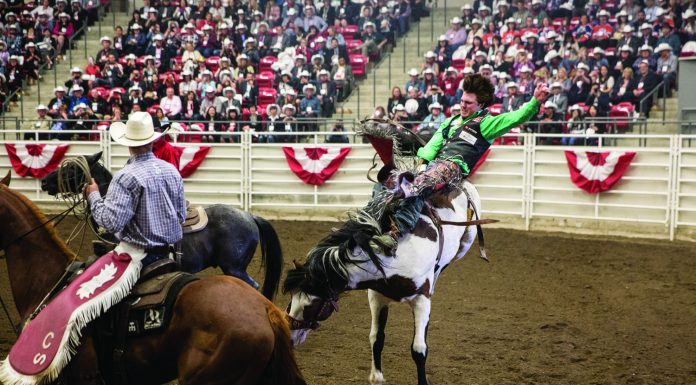 The Calgary Stampede is one of the city's most unique experiences. (Destination Canada)