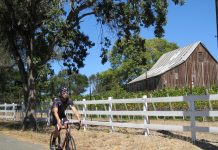 Your clients can explore Napa's wine and culinary scene on the back of a bike. (Photo credit: Getaway Adventures)