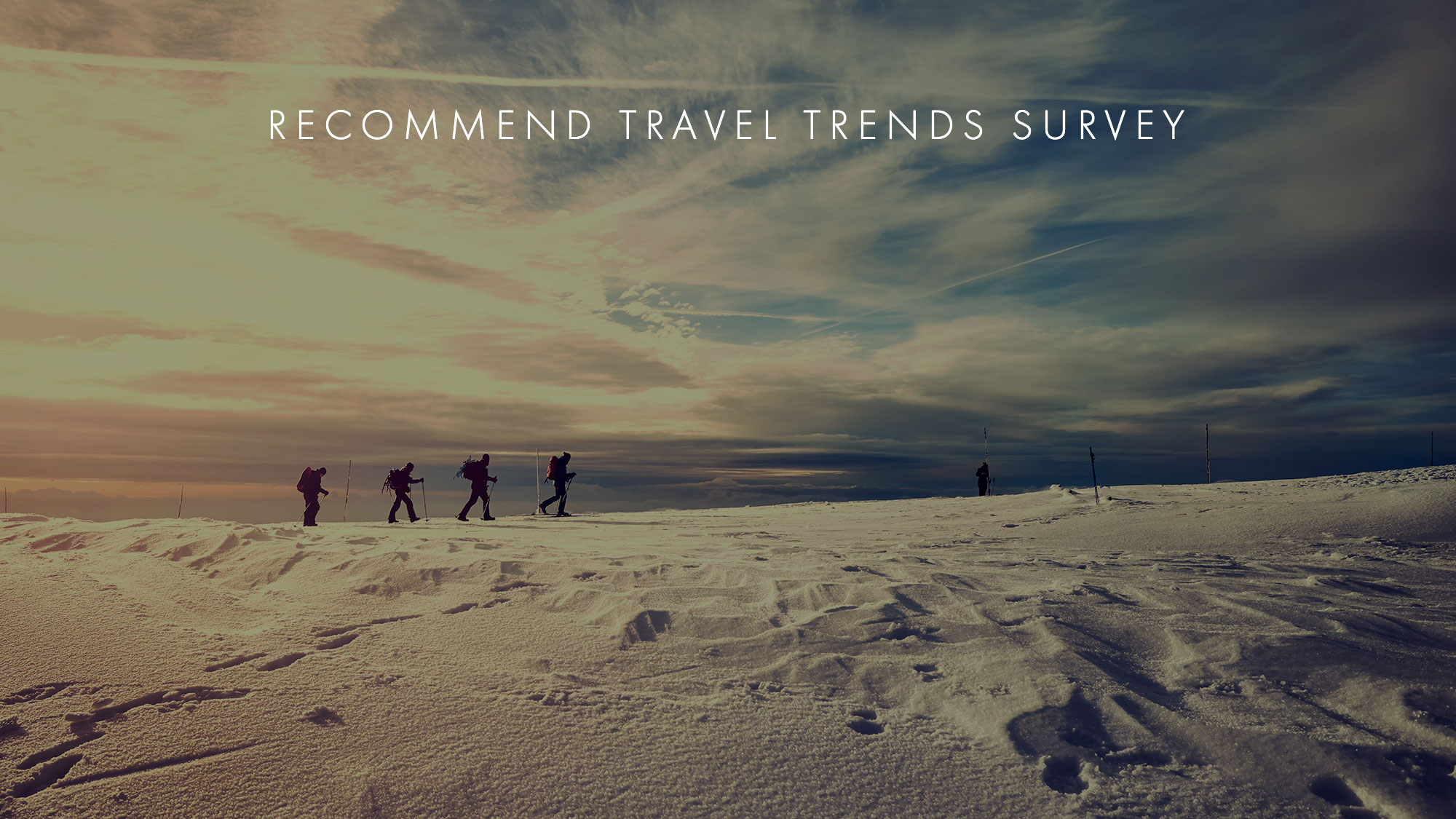 Travel Trends Survey