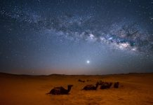 Views of the Sahara desert. (Photo courtesy of On The Go Tours.)