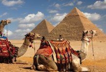 Central Holidays Egypt
