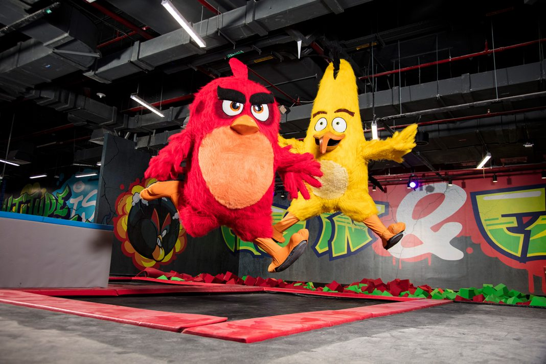 The popular online game, Angry Birds, is now the theme of an entertainment park in Qatar.