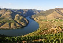 Riviera River Cruises is expanding its solo traveler sailings to the Douro River.