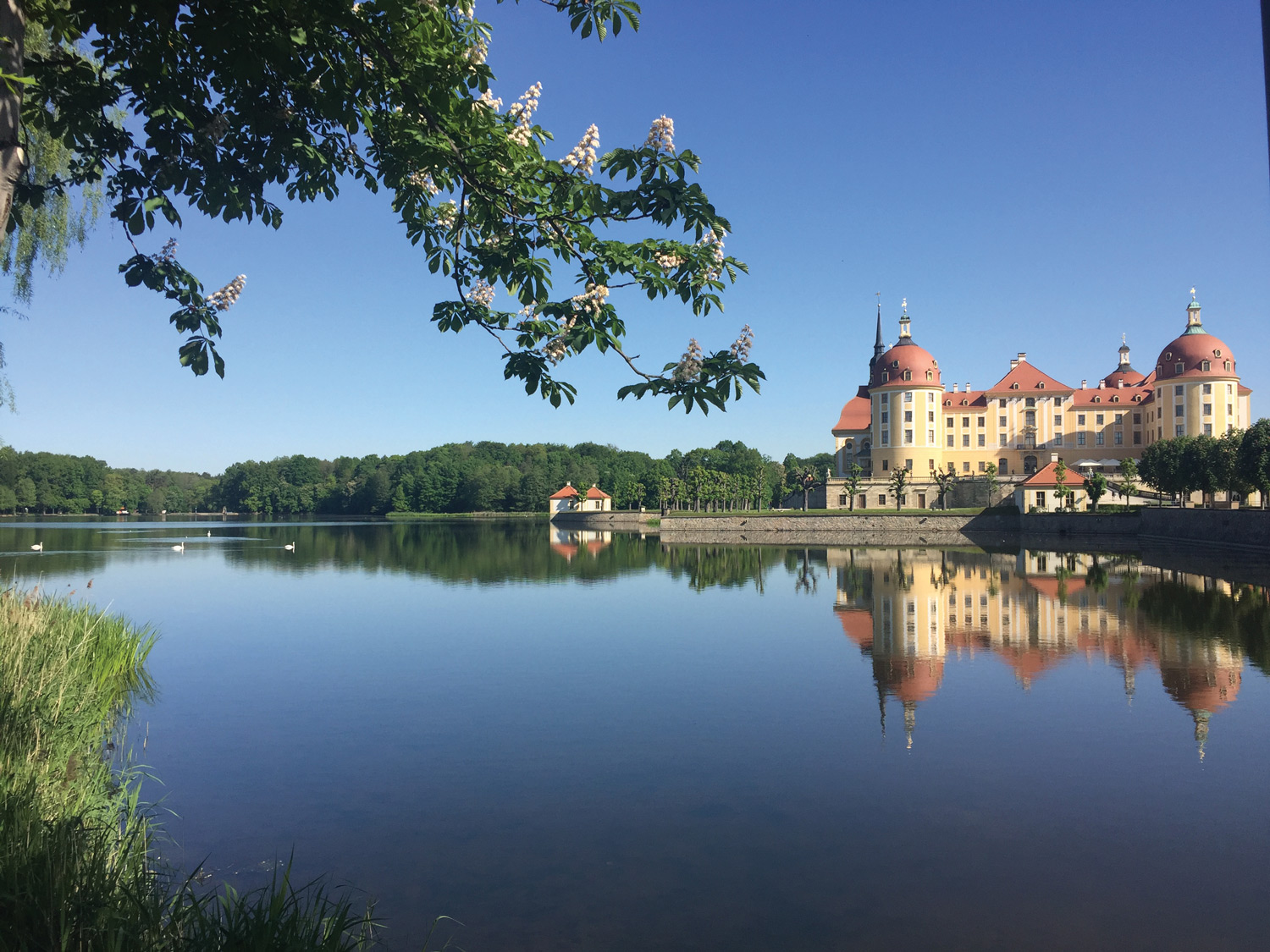 Moritzburg Castle, located about eight miles from Dresden.