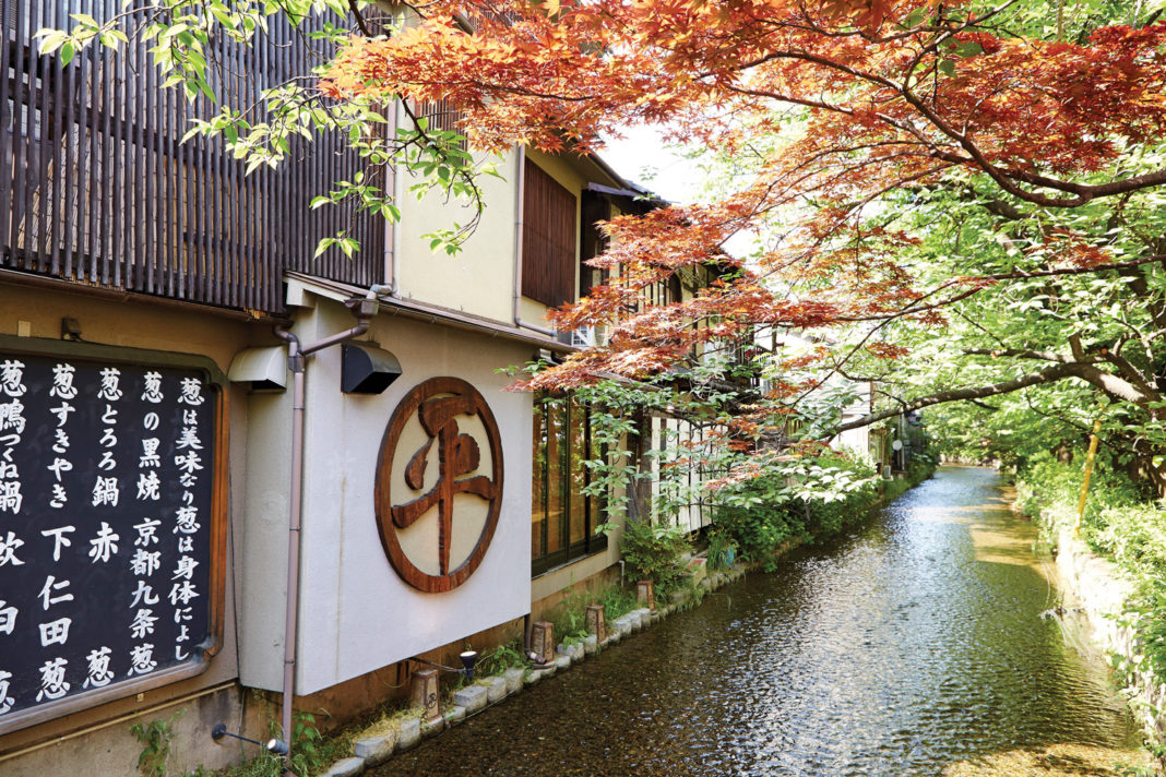 Japan is a hot destination for 2019.