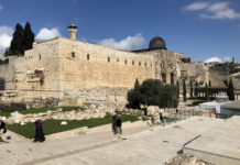 Jerusalem Spring Break