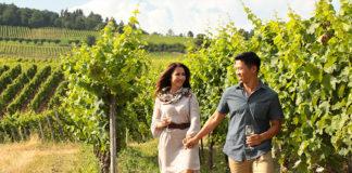 AmaWaterways wine cruise