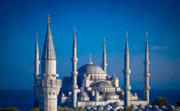 Turkey FAMs