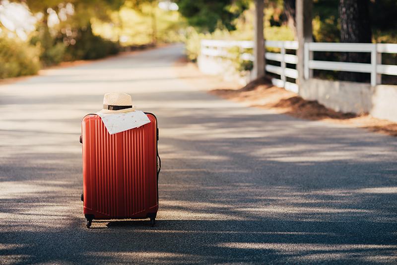 Travel Advisors